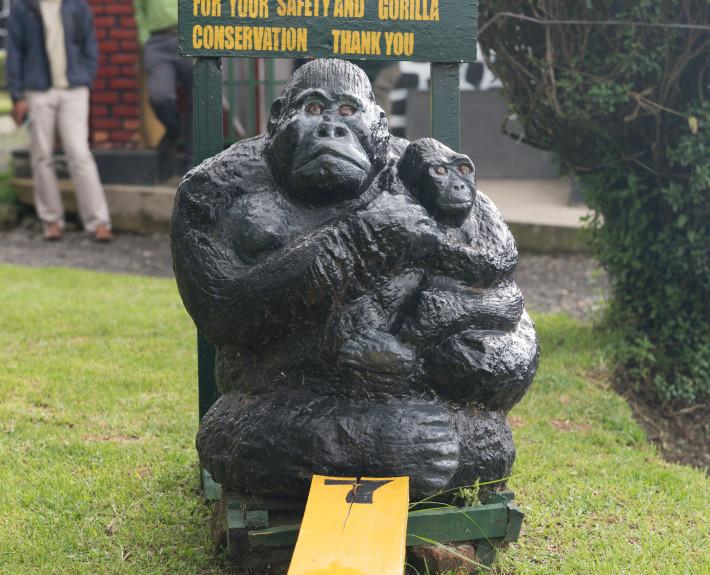 Abstand_halten_zu_den_Gorillas