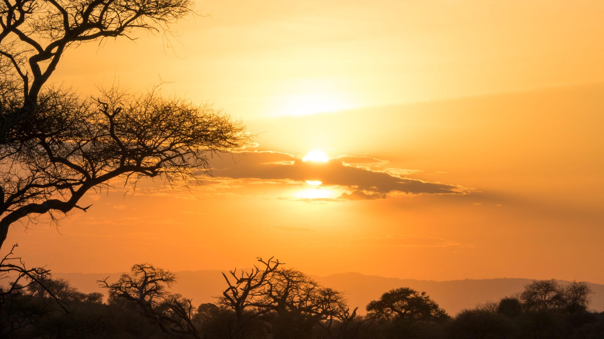 Sonnenuntergang im Tarangire Nationalpark, Tansania