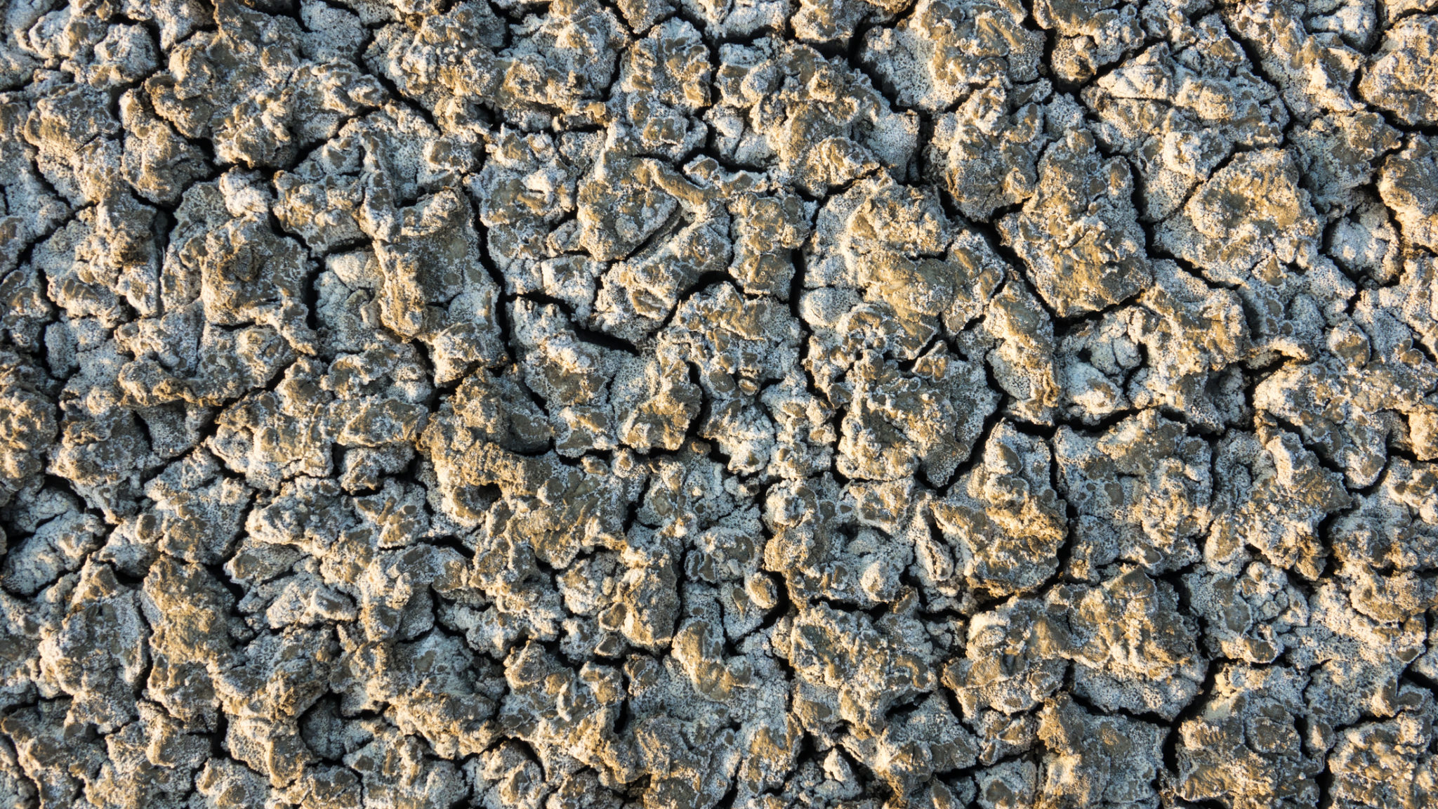 Ausgetrockneter Boden am Lake Manyara, Tansania