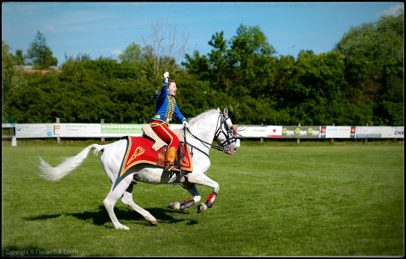 Reiter auf einem Pferd