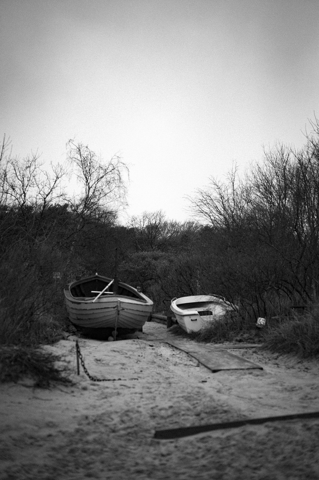 Leica-M-Monochrom-Tim-Bucka7